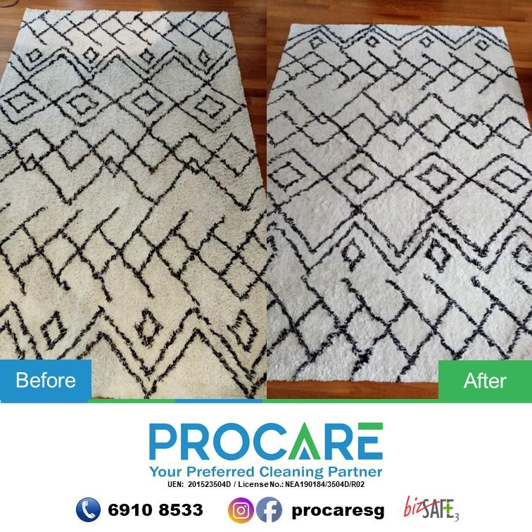 Carpet-3003