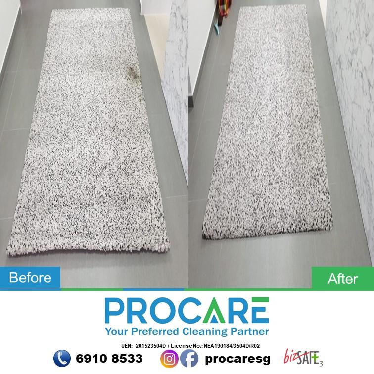 Carpet-3012