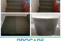 Carpet-1407