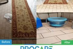 Carpet-1411
