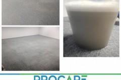 Carpet-2909