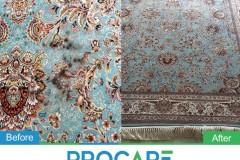 Carpet-301