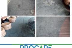Office-Carpet-0508