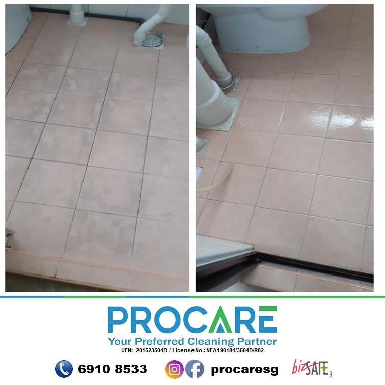 Toilet-Tiles-1310